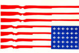US Arms Flag.